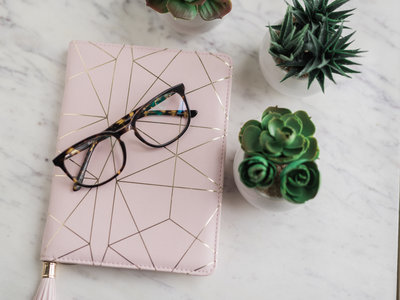 Blush journal. glasses, and succulents