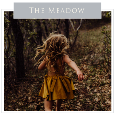 Preset_The Meadow