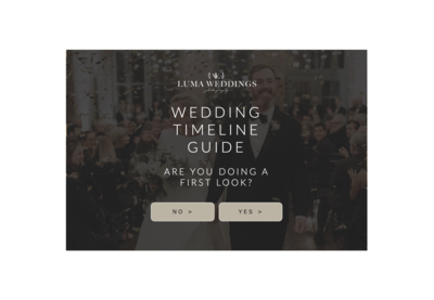 ShowIt Wedding Timeline Website Template