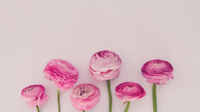 haute-stock-photography-may-flowers-final-18 copy