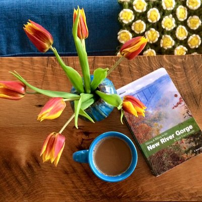 You'll find books in our vacation rentals for all the new river gorge trails.