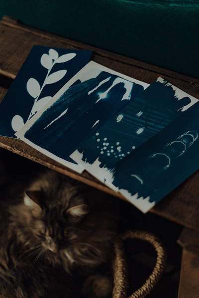 Atelier-cyanotype-toulouse