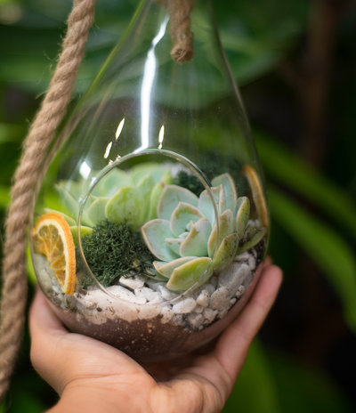 Apotheca_Kids'_Terrarium_Workshop