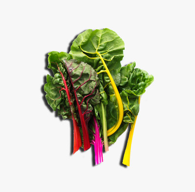 rainbow-swiss-chard