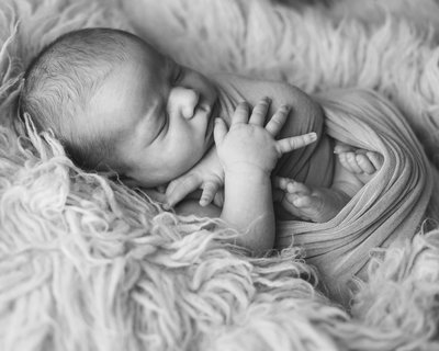 NEWBORN ERIKA LYNN PHOTOGRAPHY (42)