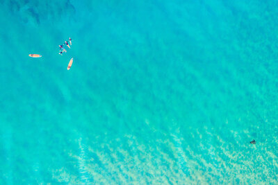 Family drone portrait with sea turtle and surfboards