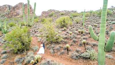 bride and groom desert gold canyon drone