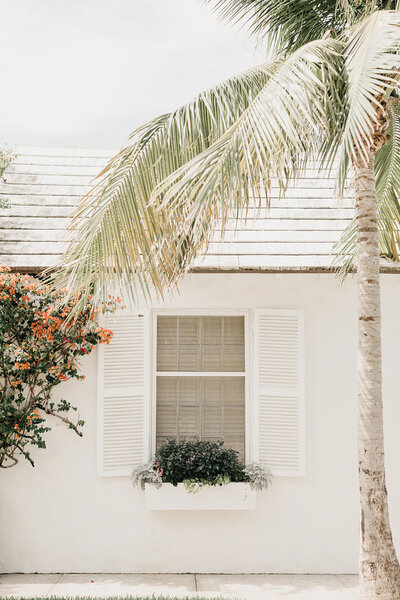tropical house with shutters open palm tree