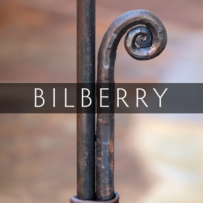 Bilberry-Hero