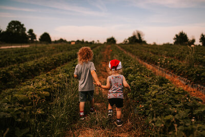 little boys in a field with natural background and light
