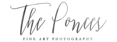 the-Ponce's-logo-LARGE-STROKE