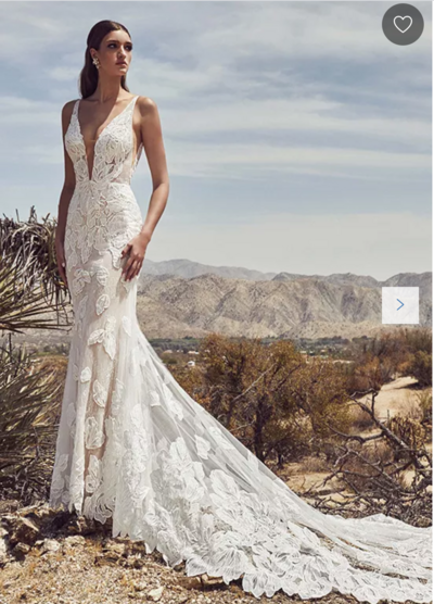 Ivory lace Fit and flare silhouette Deep v-plunge neckline Bold appliques Scooped back Dramatic cascading train