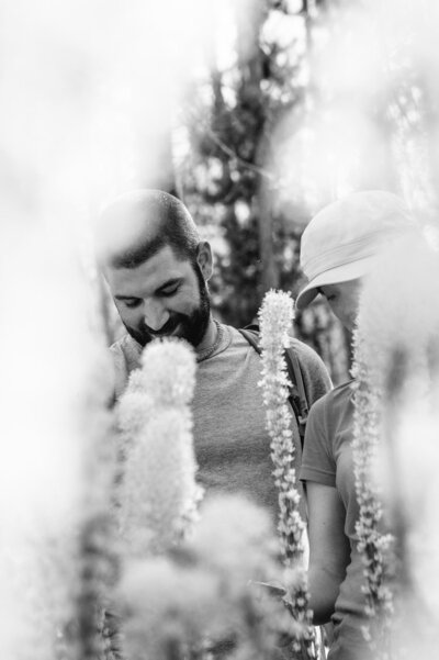 Engaged couple walks through summer bear grass in Montana