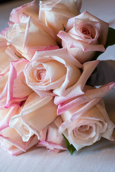 south shore wedding photography flowers roses pink bouquet