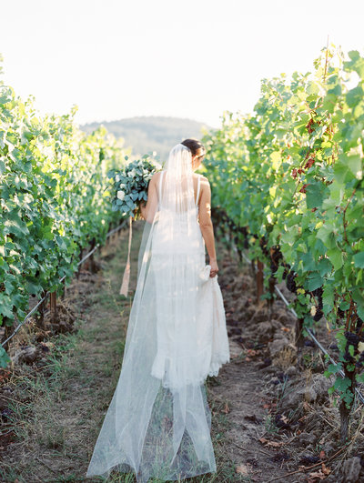 a beautiful bride walking through a vineyard at sunset