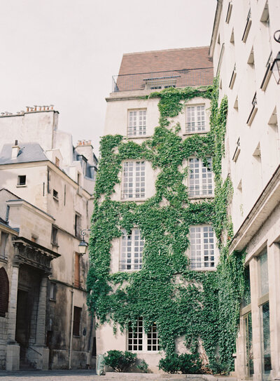 Ivy covered facade in Le Marais Paris captured by Hannah Alyssa