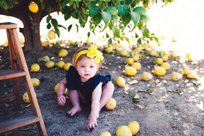 RENEE STENGEL Photography | Charlotte Portrait and Underwater Photographer |  15 Month Milestone Baby Girl under the Yellow Lemon Tree