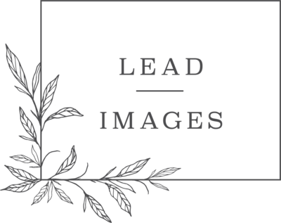 Lead Images Logo Charcoal RGB HR