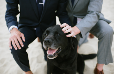 Two men with dog in wedding suits