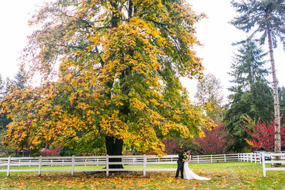 Filigree-Farms-wedding-Buckley-Washington-004
