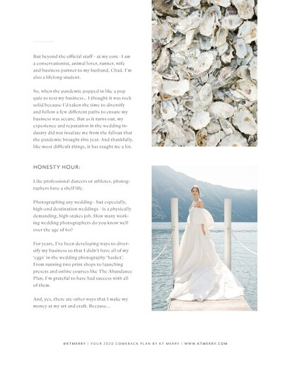 The Ultimate Comeback Plan for Wedding Photographers_Page_03