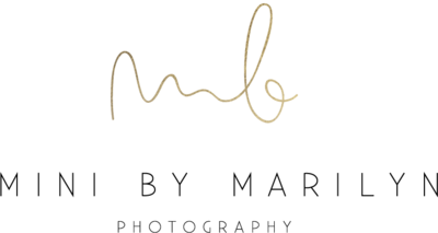 MB_logo_mini