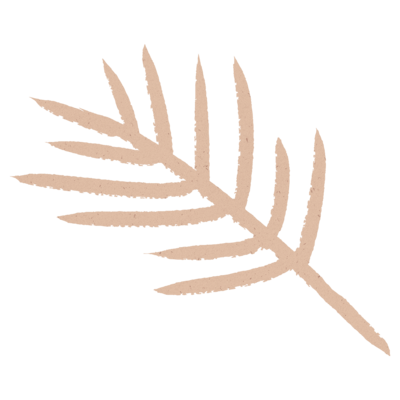 pink palm leaf illustration