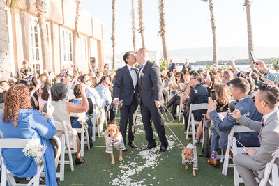 Same sex couple kisses while walking down the aisle married with their pups at waterfront wedding ceremony