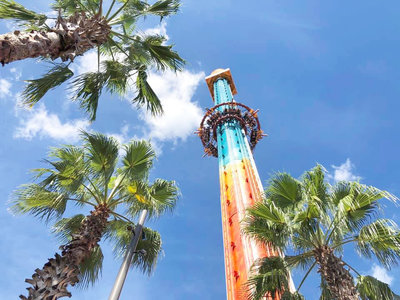 Looking up at a drop zone style rollercoaster ride at a theme park surrounded by palm trees