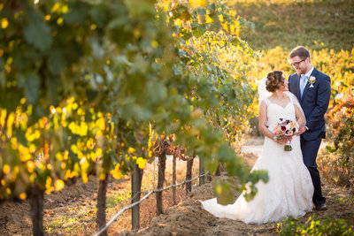 Bride and Groom standing in vineyard on their wedding day at Europa Village