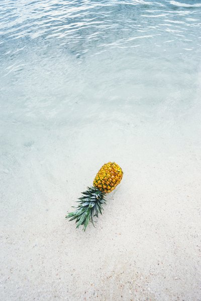 pineapple-supply-co-244468