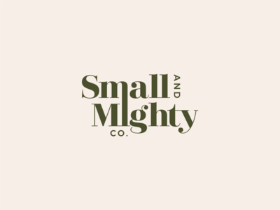 small-and-mighty-co-branding-main-logo