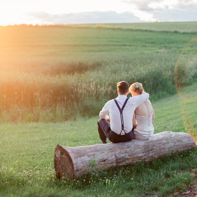 taryn christine photography wedding images for bride and groom in summer backyard wedding sitting on stump looking at farm fields
