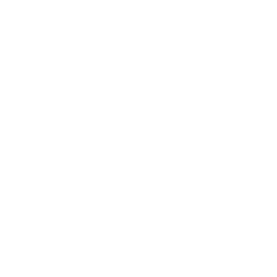 Werth Photography Logo 2