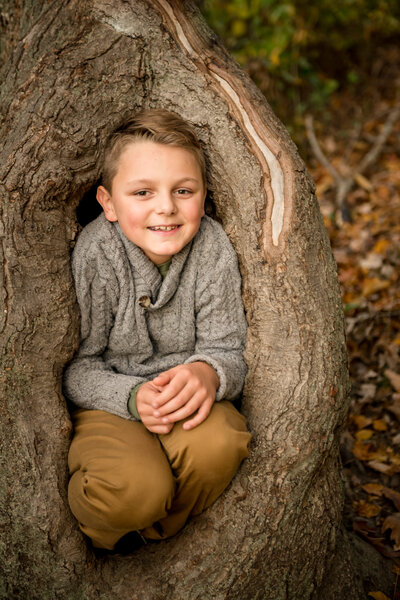 boy sitting in a tree during family photo session