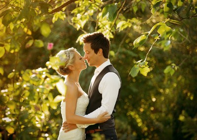 Bride and Groom Kissing under a sunlit tree at Hodsock priory wedding venue