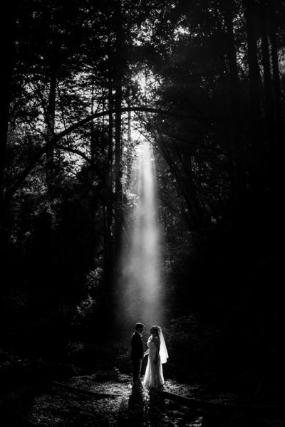 California Forest Wedding Photographer Saratoga Springs_0485