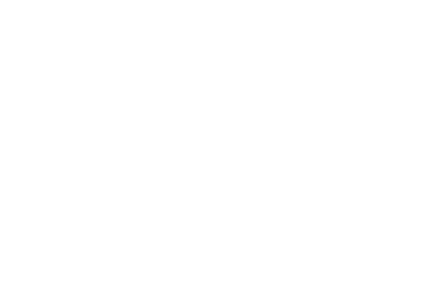 RELEASE_PassThruCustomArrows_Logo-08
