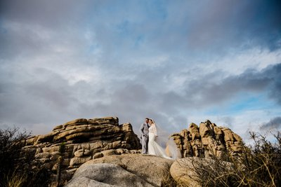 Joshua Tree Elopement Photographer-1