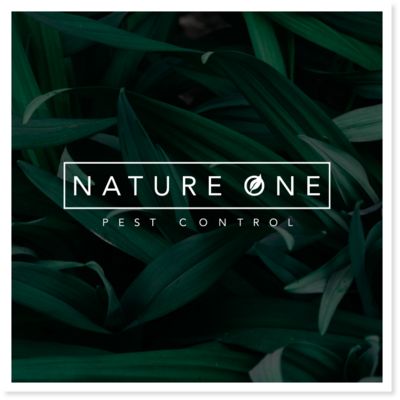Nature One Logo