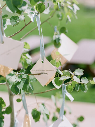 Reception seating chart name on a blue ribbon hangs from a tree branch