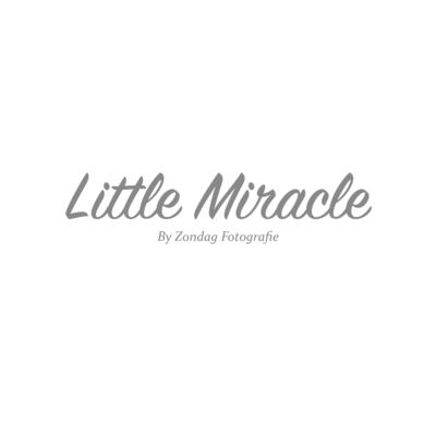 Littlemiracle logo2