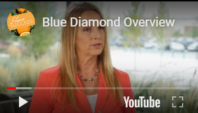 Blue Diamond Overview
