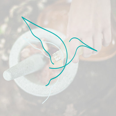 hummingbird_acupuncture_logo