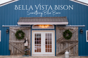 Bella Vista Bison