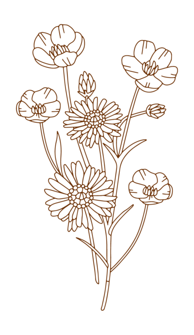 flower illustrations-05