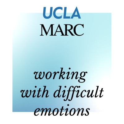 self paced course working with difficult emotions