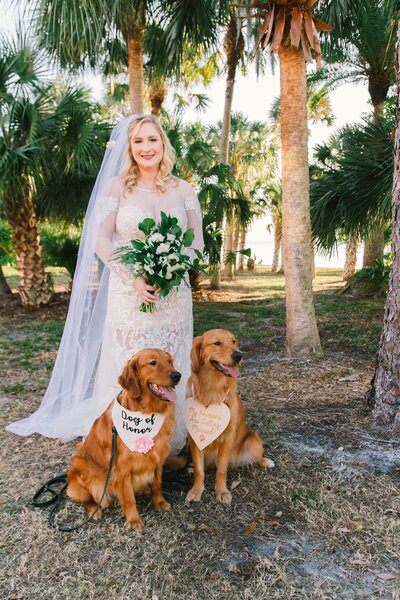 dogs-in-wedding-tampa