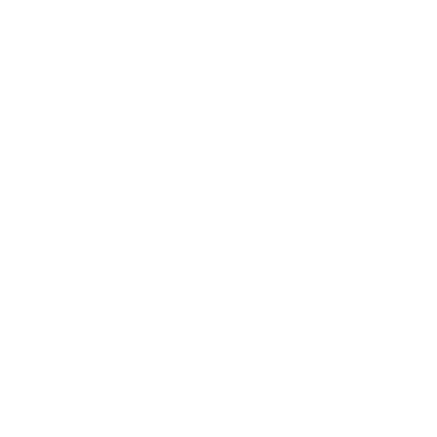 instagram-white
