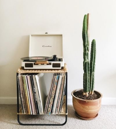 Vinyl Player with Plants